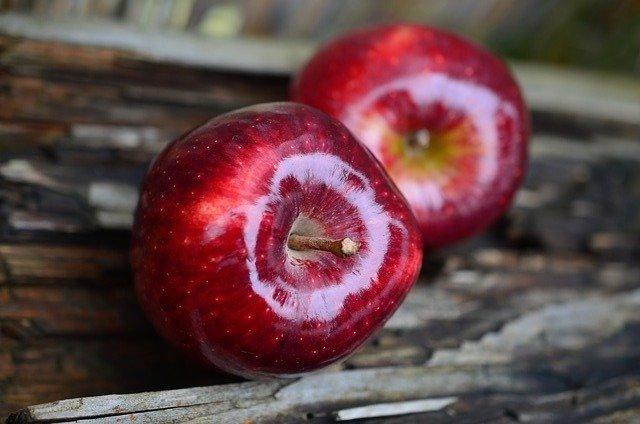 Apfelschneider und weitere Tipps in der Übersicht